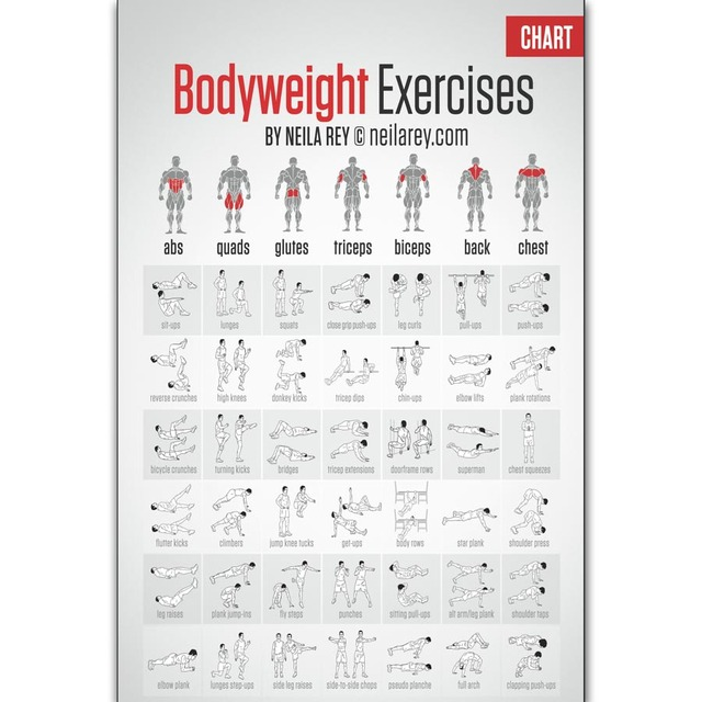 FX756 Hot New Free Bodyweight Workout Fitness Muscle Home Exercise