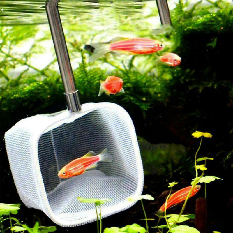 Stainless steel Fishing Net Pocket Retractable 3D Shrimp Fishing Aquarium Accessories Parts in Fish Aquatic Supplies Parts from Home Garden
