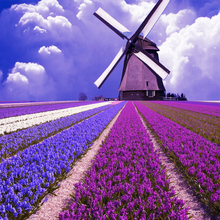 Megayouput 3D diy diamond painting cross stitch diamond embroidery Dutch windmill mosaic pattern lavender flower picture gift
