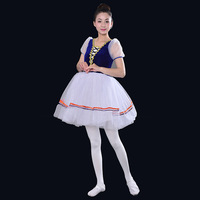 Adult Swan Lake Dance Clothing Apparel Woman Ballet Skirt Adult Professional Picture Ballet Dress Blue