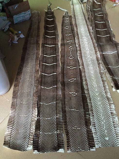 Snake Skin For Belt Purse DIY Width10-11cm,long100cm