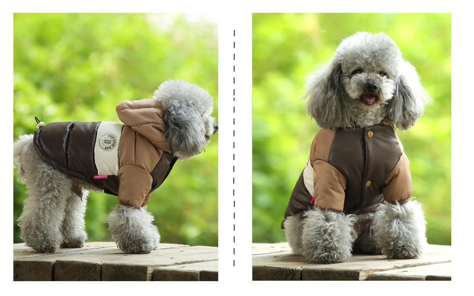 Nueva ropa de invierno para perros, abrigo impermeable con capucha 17