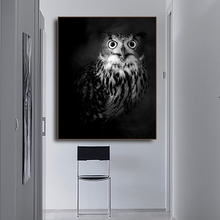 Owl Photography Animals Print Home Decoration Wall Art Canvas Painting Calligraphy Pictures Posters for Living Room Bedroom