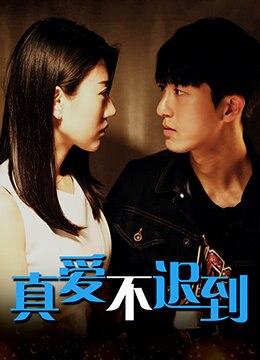 《真爱不迟到》2019年中国大陆剧情,爱情电影在线观看
