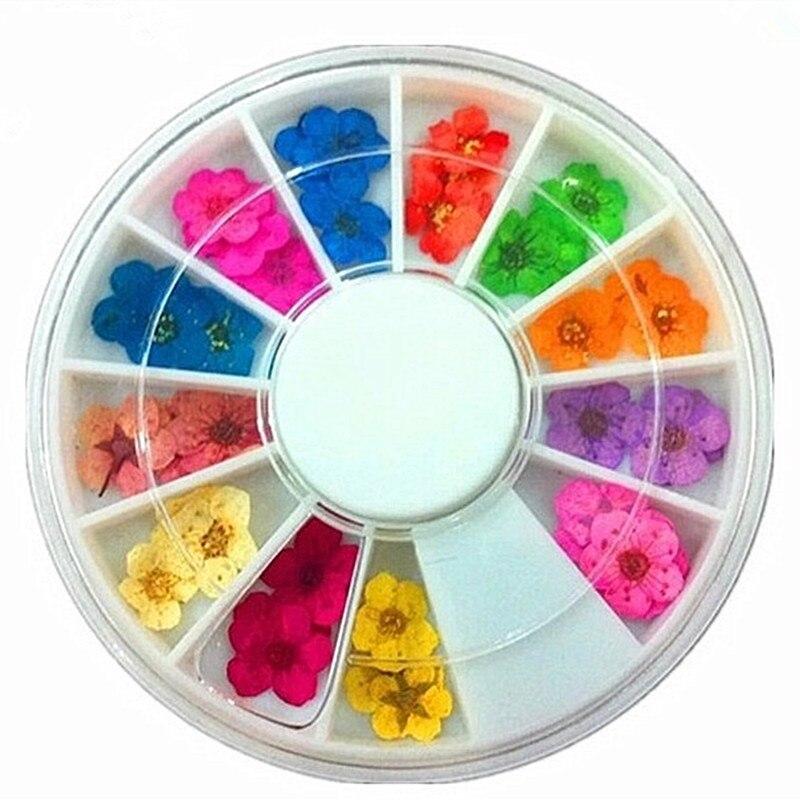 12 Colors Dried Flower Real Hydrangea 3D Vivid Petal Natural Floral Nail Art Tips Decoration