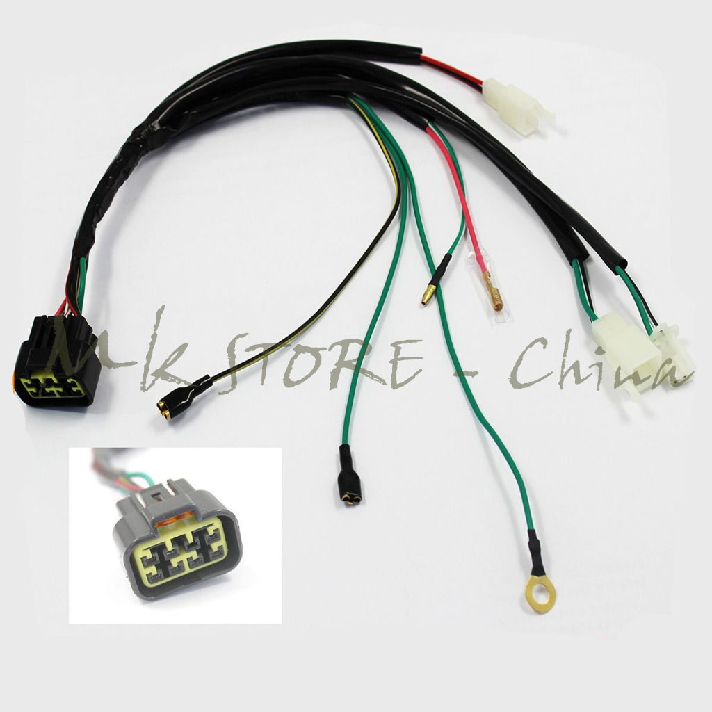 Wire font b Wiring b font Harness Loom font b LIFAN b font 150cc ZHONGSHEN 155cc?resize\=665%2C665\&ssl\=1 lifan 250 stator wiring diagram lifan 110 wiring diagram, pit pit bike wiring harness at edmiracle.co