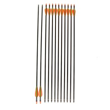 Outdoor Shooting Arrow Bow762mm Shooting Archery Fiberglass Arrows with Changeable Arrowheads and Plastic Feathers for Hunting