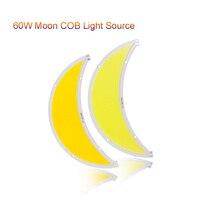 1pcs Moon COB LED Module 60W Flip Led Panel Lights DC12 14V L180MM Street Light Fish