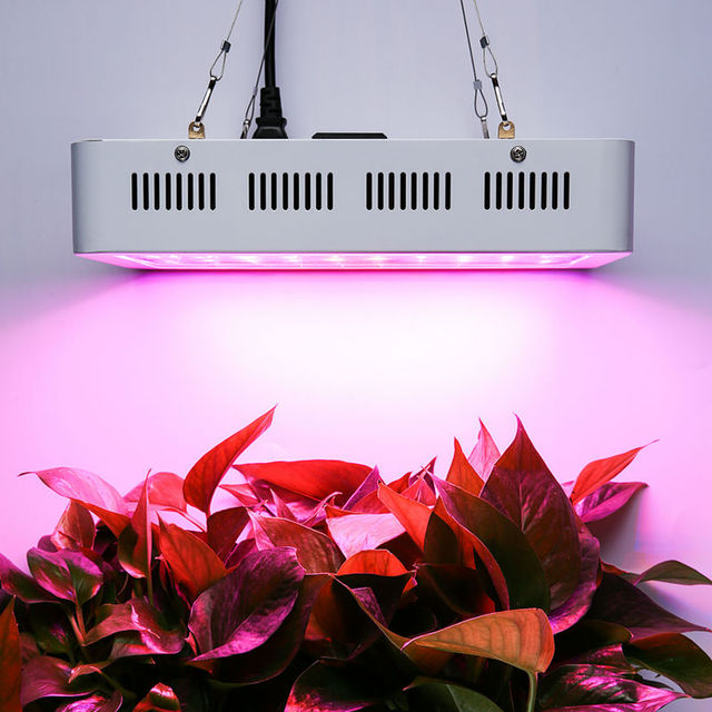 800w Led Growing Lights For Growing Hydroponics Plants Indoor Double