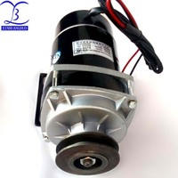 650w 24V/ 36V / 48v belt pulley gear motor ,brush motor electric tricycle motor , DC gear brushed motor, MY1020ZXF