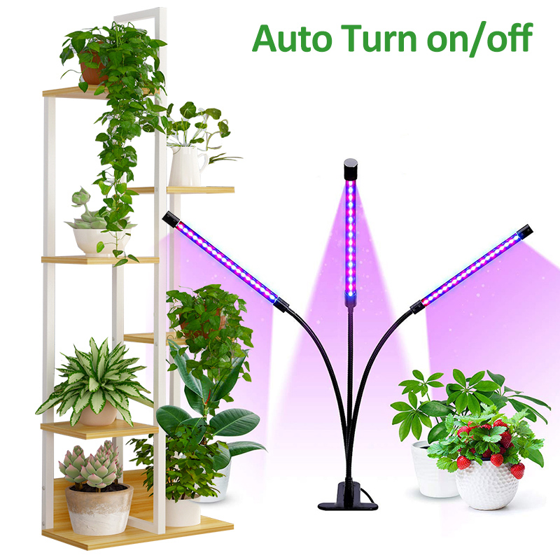 фитолампа LED Grow Light Timer Lamp For Plants Seedlings Phyto Lamp Fitolampy For Plant Stand Desk Plants Indoor Growth Lamps