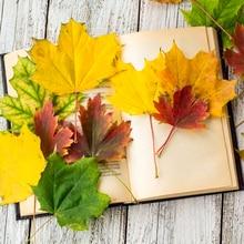 50 шт. кленовые искусственные листья цветов для декора стола шелковые лепестки осенние для свадеб мероприятий кухонные аксессуары украшения дома