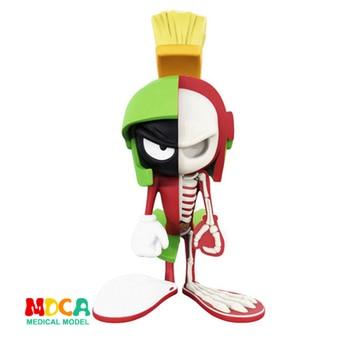 Marciano Ma Wen 4D XXRAY maestro poderoso Jaxx Jason Freeny Anatomía de dibujos animados de
