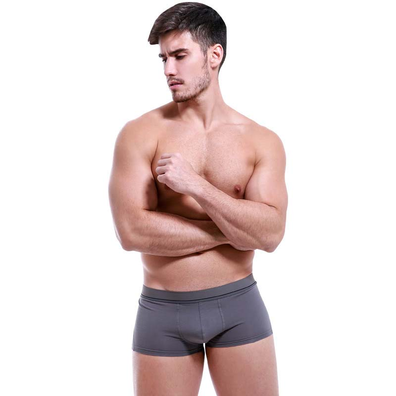 Famous Brand Sexy Mens Underwear Boxer Shorts Cotton Luxury Men Underpants Pull In Male Panties 6Pcs/lot