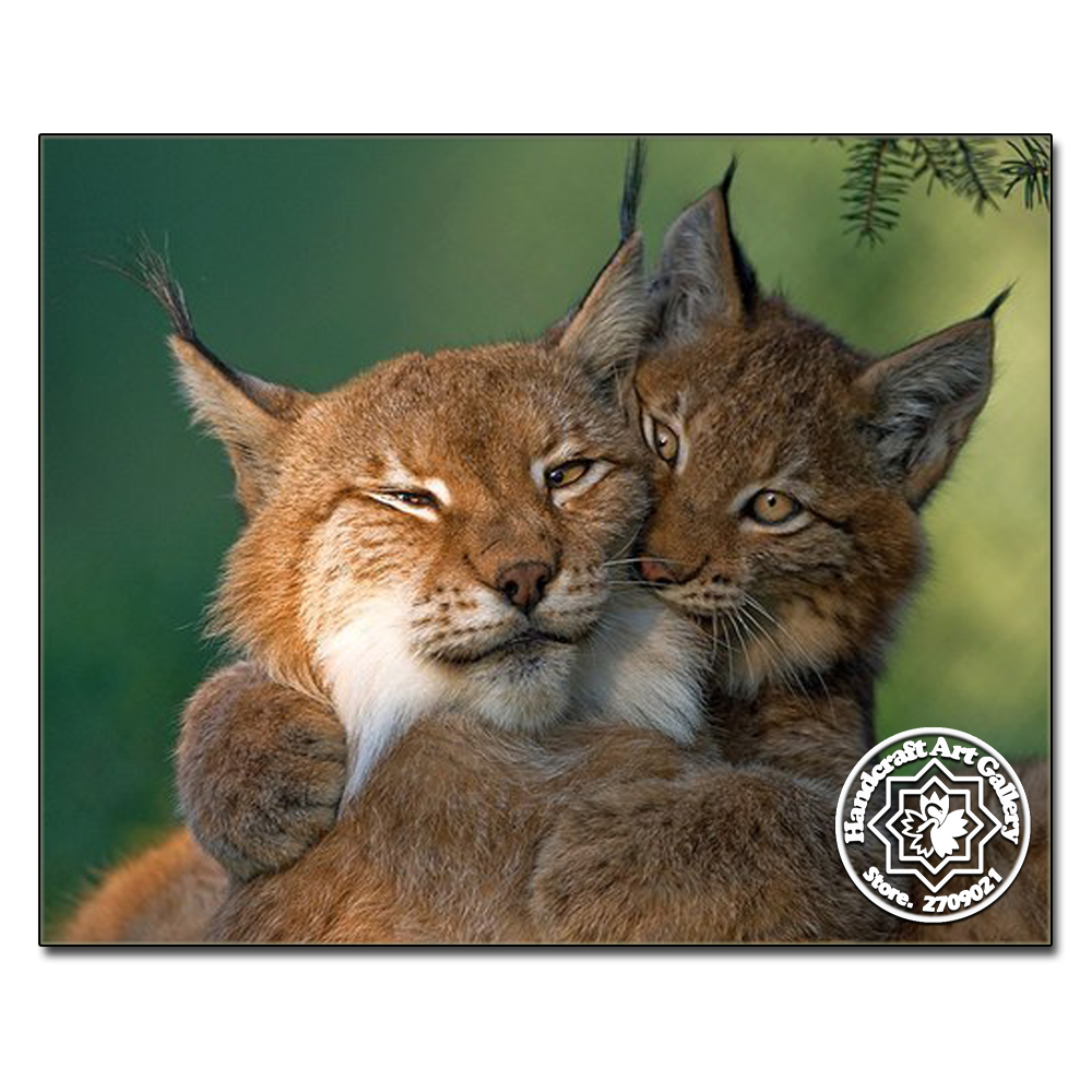 Free Shipping Factory Direct Sale Diamond Painting Full Square Diamond Embroidery Acessorios Home Decoration Cross Stitch Lynx