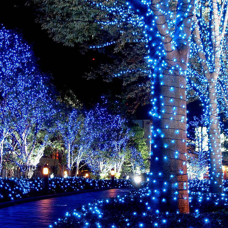 10M-100M 220V LED String Light Christmas Tree Lights Outdoor Waterproof Decoration Faily Lamp For Holiday / NEW YEAR