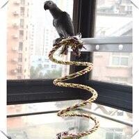 2 metros de cuerda perch bobina de giro con Bell-ardilla loro Juguetes y piezas para medianas y grandes aves