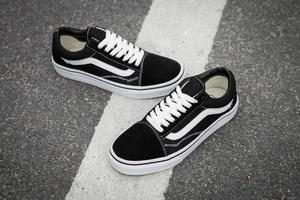 1a4f3eb8bed VANS OLD SKOOL Classic Womens Sneakers shoes