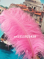 Free EMS shipping 100pcs 70-75cm / 28-30inch natural pink ostrich feathers wedding diy stage performance Clothing accessories