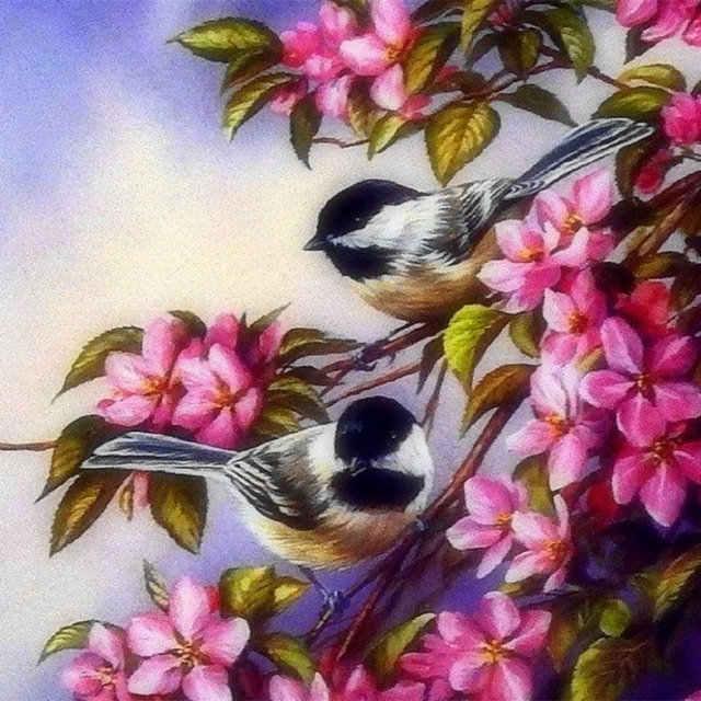 HUACAN-Diamond-Embroidery-Animals-5D-DIY-Diamond-Painting-Birds-Cross-Stitch-Picture-Of-Rhinestone-Paint-With.jpg_640x640 (11)