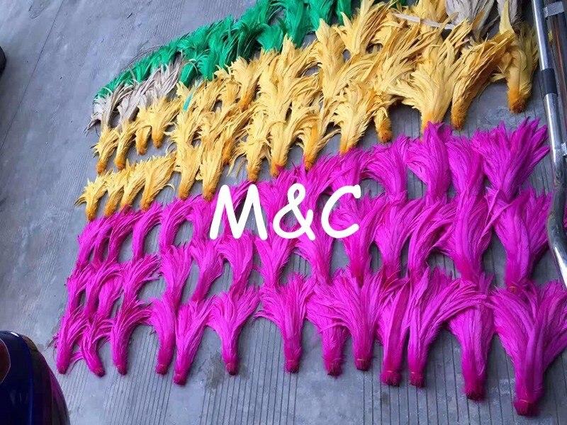 galo cauda coque penas decoração artesanato