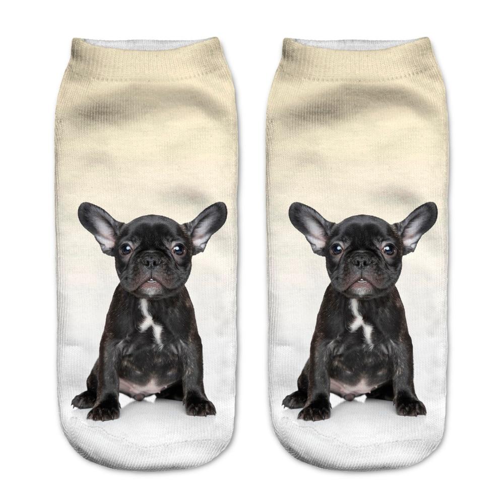 Chihuahua Brown Dog Socks