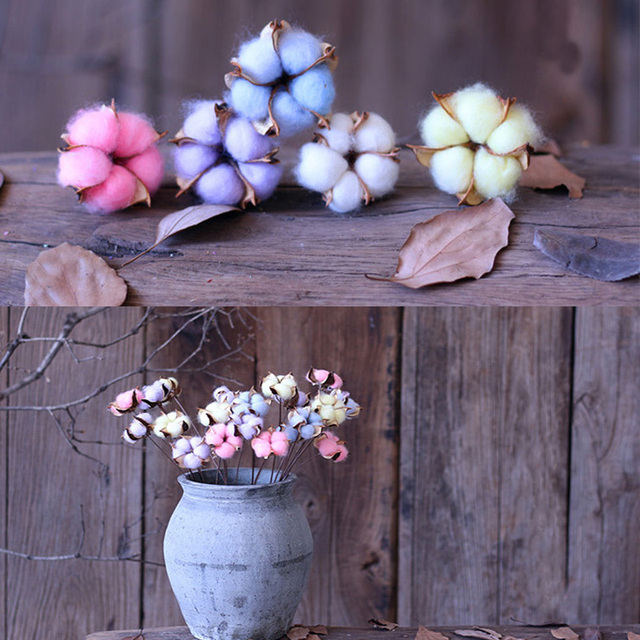 1 Pieces Colorful Cotton Flower Natural Dried Plant For Wedding Party Home  Hotel Decoration DIY Bouquet