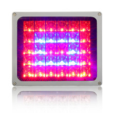 LED Flood Grow Light Plant Greenhouse Gruit and Vegetable Full Spectrum Waterproof Lamp 60W 100W Red Blue Color Lights free shipping ems and mining lamp cover lamp supermarket lamp red black blue fruit and vegetable pendant light fg672