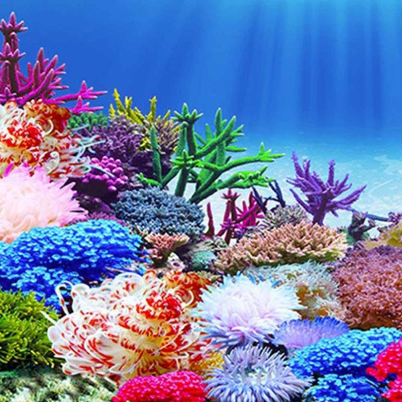 Fish Tank Background Painting 3D Ocean Landscape Poster Fish Tank Background Aquarium Decorative Painting Decals Drop Shipping in Decorations from Home Garden