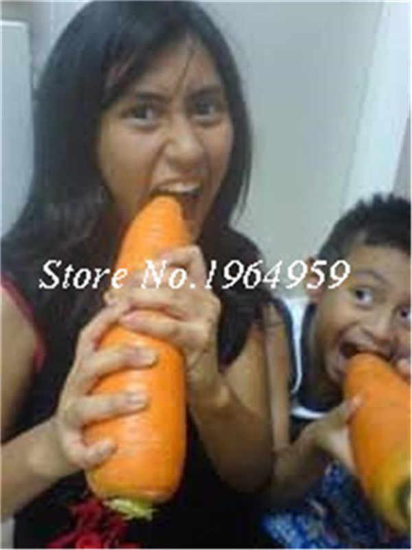 200 шт морковный Бонсай синий желтый редис органические зеленые овощи, растения садовые мужчины Loseweight здоровье фрукты растительная пища бонсай