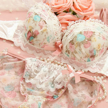 New 2017 Lace Embroidery Bra Sets Sexy Women Push Up Underwear Set Bra and Panty Set B Cup For Female