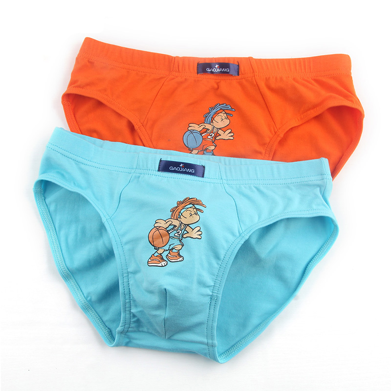 6a20df7163fc 2018 New 2 Pcs/lot Bamboo Fiber Underpants Comfortable Breathable Underwear  Kids boys Boxer for 3 10Yrs Boys Briefs QS1005 on Aliexpress.com | Alibaba  Group