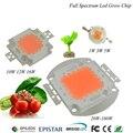 380Nm-840Nm chip de alta potência LEVOU Cresce A luz 1 W 3 W 5 W 10 W 20 W 30 W 50 W 100 W Espectro Completo Planta Crescer lâmpada Do Jardim Vegetal diodo