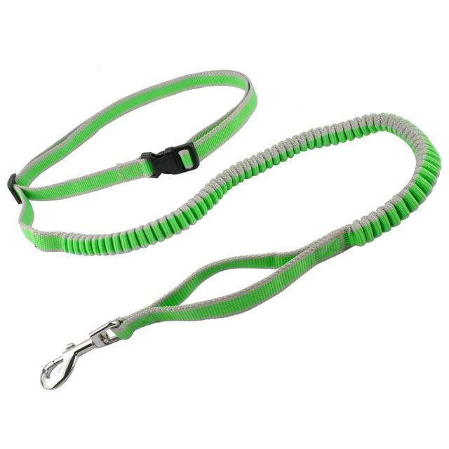 Hands Free Dog Leash For Running Walking Hiking Elastic Bungee Dog Leash With Adjustable Waist Belt M L
