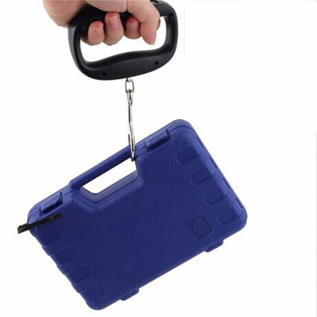 50kg 10g Portable Hanging Scale