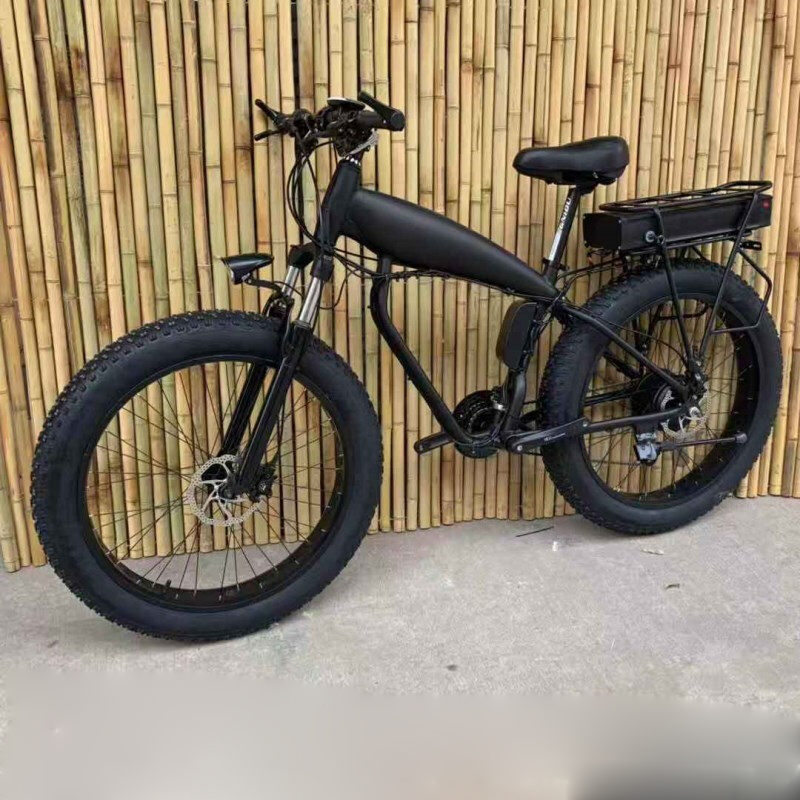 Custom 26inch Fat tire ebike 1500W 48V45ah Li-ion snow electric mountain bicycle Hydraulic disc brake Double lithium battery