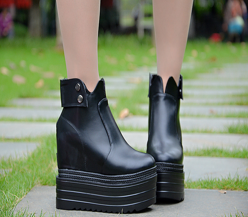 ФОТО 13CM within the heightened women's shoes Wild thick heel wedge heel shoes with high heels Fall and winter new boots