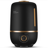 DMWD 4L Mini Ultrasonic Humidifier Air Purifier Aromatherapy Essential Oil Diffuser For Home Waterless Auto Shut