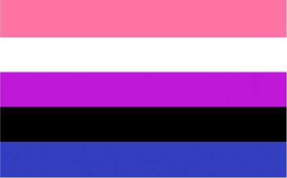 Genderfluid Genderflexible Pride Flag