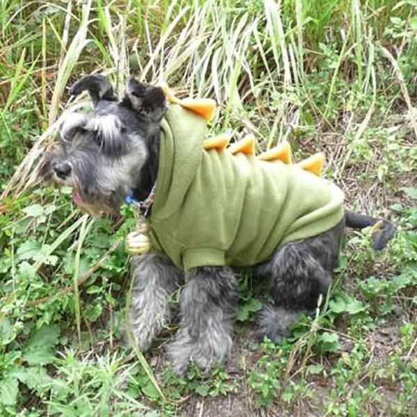Funny Pet Hunde kostüm Welpen Katze Dinosaurier Ziemlich Hoodie ...