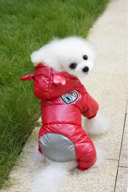 Y122_New_arrival_Winter_Pet_Dog_Cotton_Clothes_Super_warm_Puppy_dog_Four_Legs_Ski_suit_Costume_Clothes_Chihuahua_ (2)