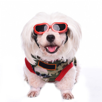 Small Dog Pet Grooming UV Sunglasses Eye Wear Dog Accessories