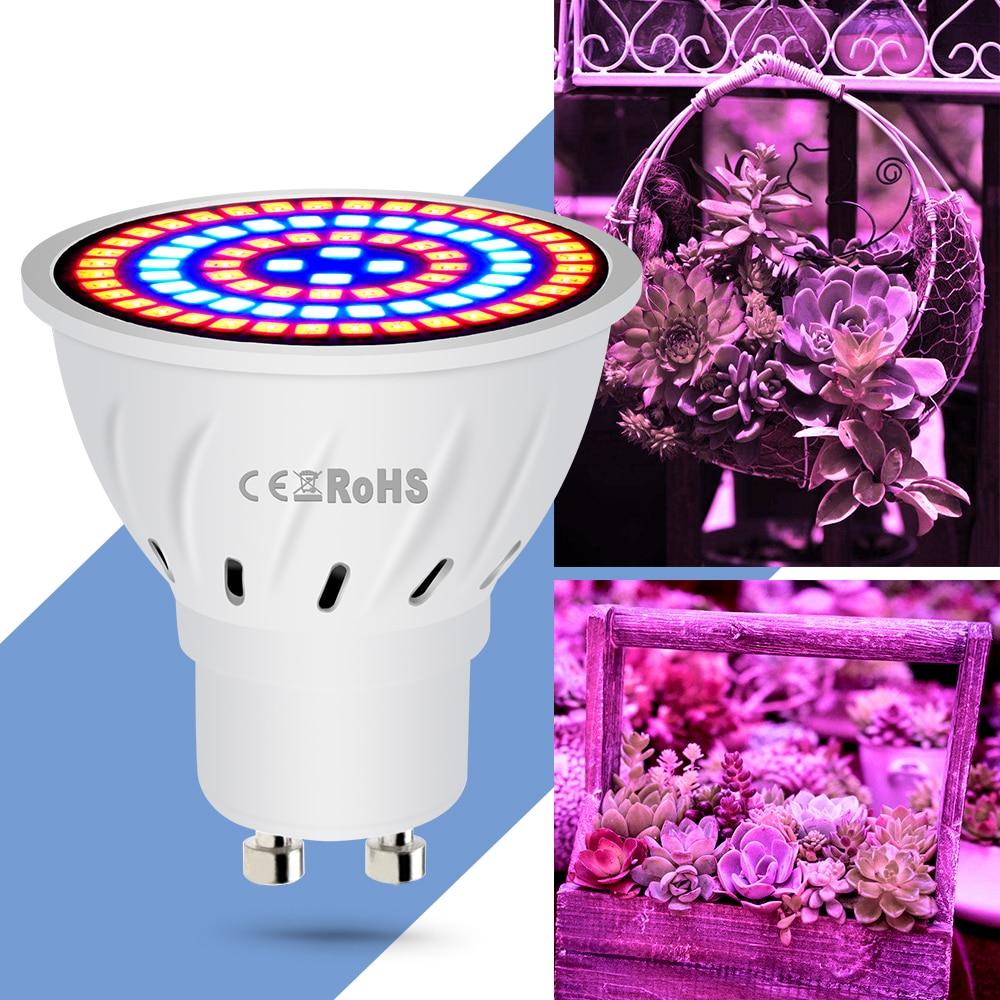 E14 LED Full Spectrum Grow Light E27 2835 LED Hydroponics Grow Bulb GU10 48 60 80leds Plant Lamp Bulb 220V MR16 Indoor Grow Tent in LED Grow Lights from Lights Lighting
