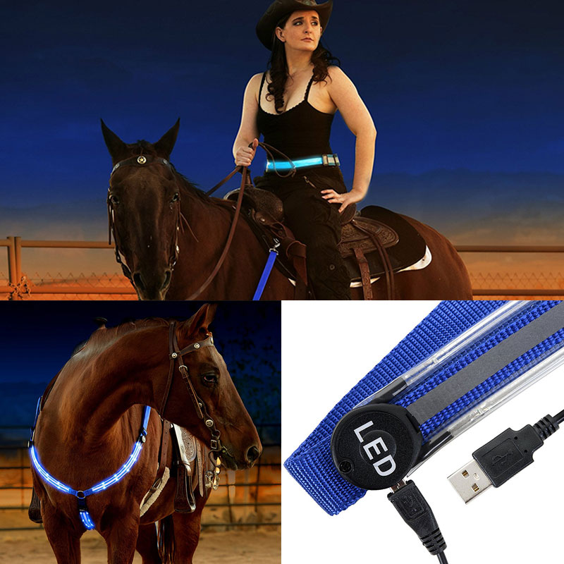 Image 2 - Rechargeable LED Horse Harness Collars Multi color Optional Dual LED Strong Lights Equestrians Horse Riding Safety Halters A-in Halters from Sports & Entertainment