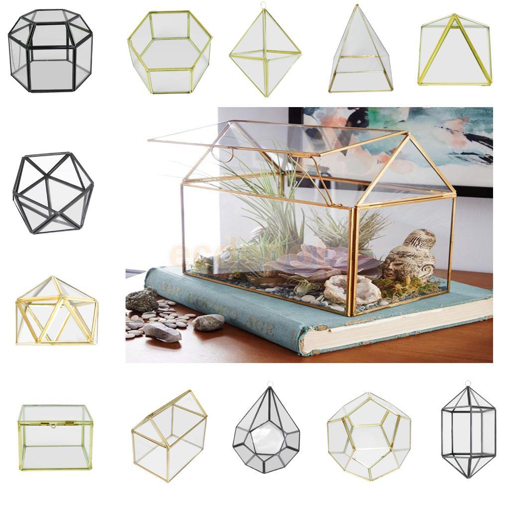 MagiDeal Various Irregular vidrio geométrico suculentas plantador terrario florero contenedor de mesa olla DIY Home Office boda decoración
