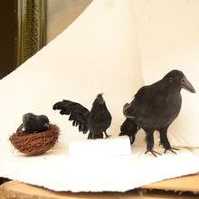 4 Pcs Halloween Prop Decor With Nest Halloween Crow Decoration Realistic Looking Birds Crows 3 Crows +1 Bird's Nest 30*16cm цена