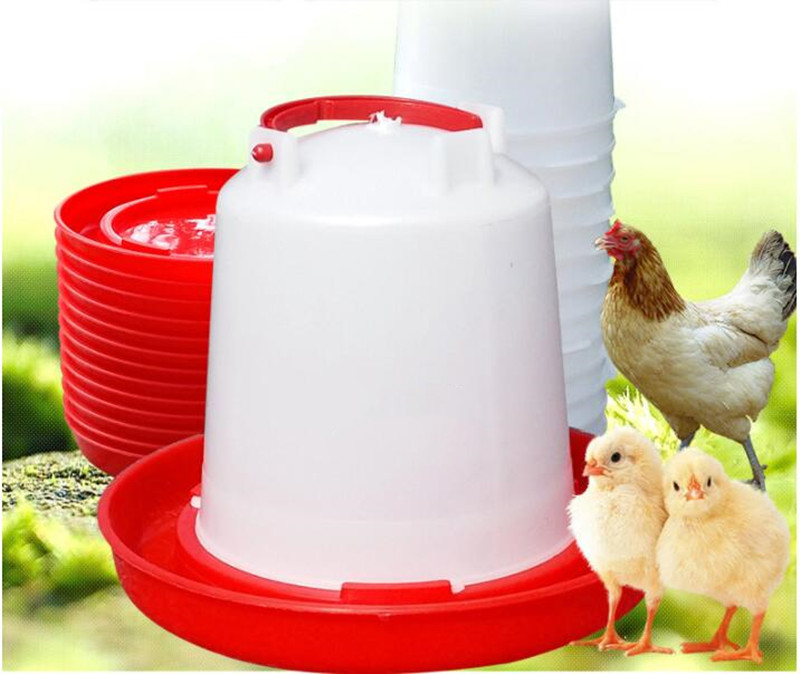 Automatic Pet Feeder Chicken Quail Poultry Bird Pheasant Feed Water Tool FL