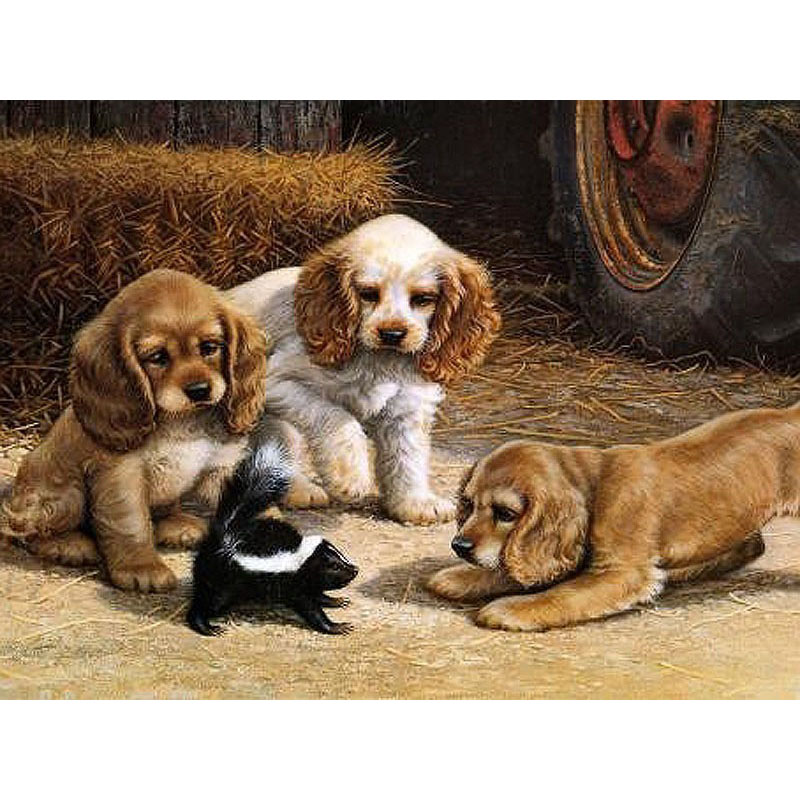 Top 10 Punto Medio Noticias | Dog Games Ggg