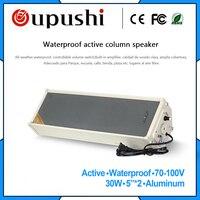 Active pa garden column speakers 30w outside wall speaker 5 inch