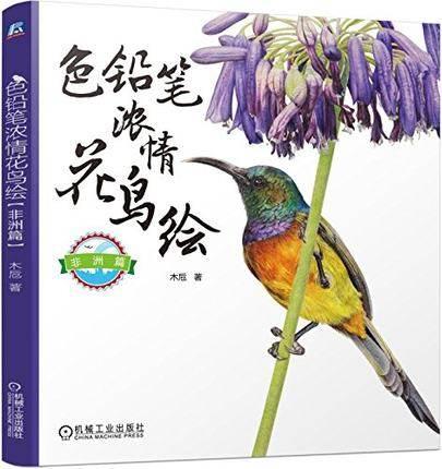 African Bunga Dicat Burung Gambar Pensil Warna Buku Sketsa Pensil